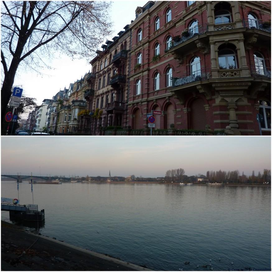 Rives du rhin Mainz