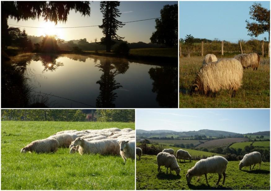depart d arroue - compostelle pays basque