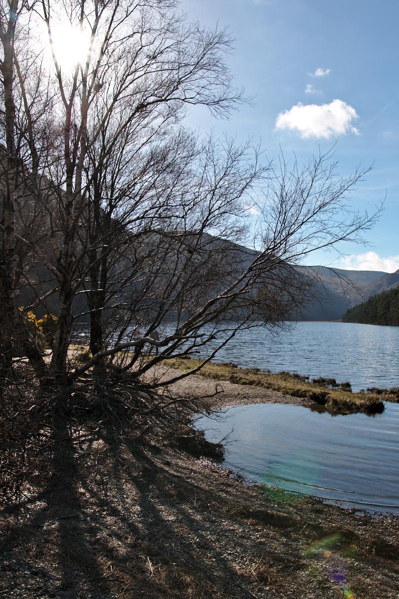 Balade au bord des lacs de glendalough cassonade et for Agence brun paysage