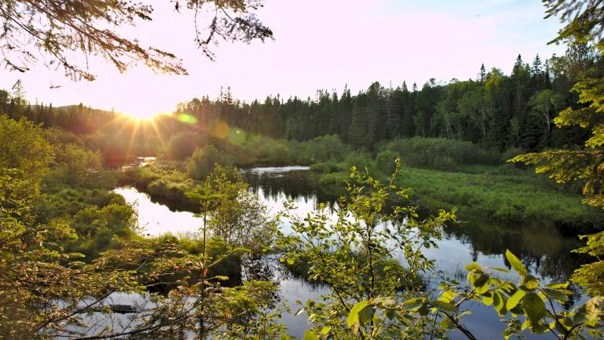 Coucher de soleil - Parc du Mont-Tremblant