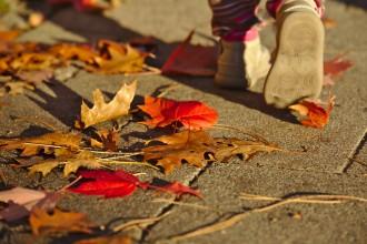 Petits pas dans les feuilles mortes - Automne - Darmstadt Bessungen