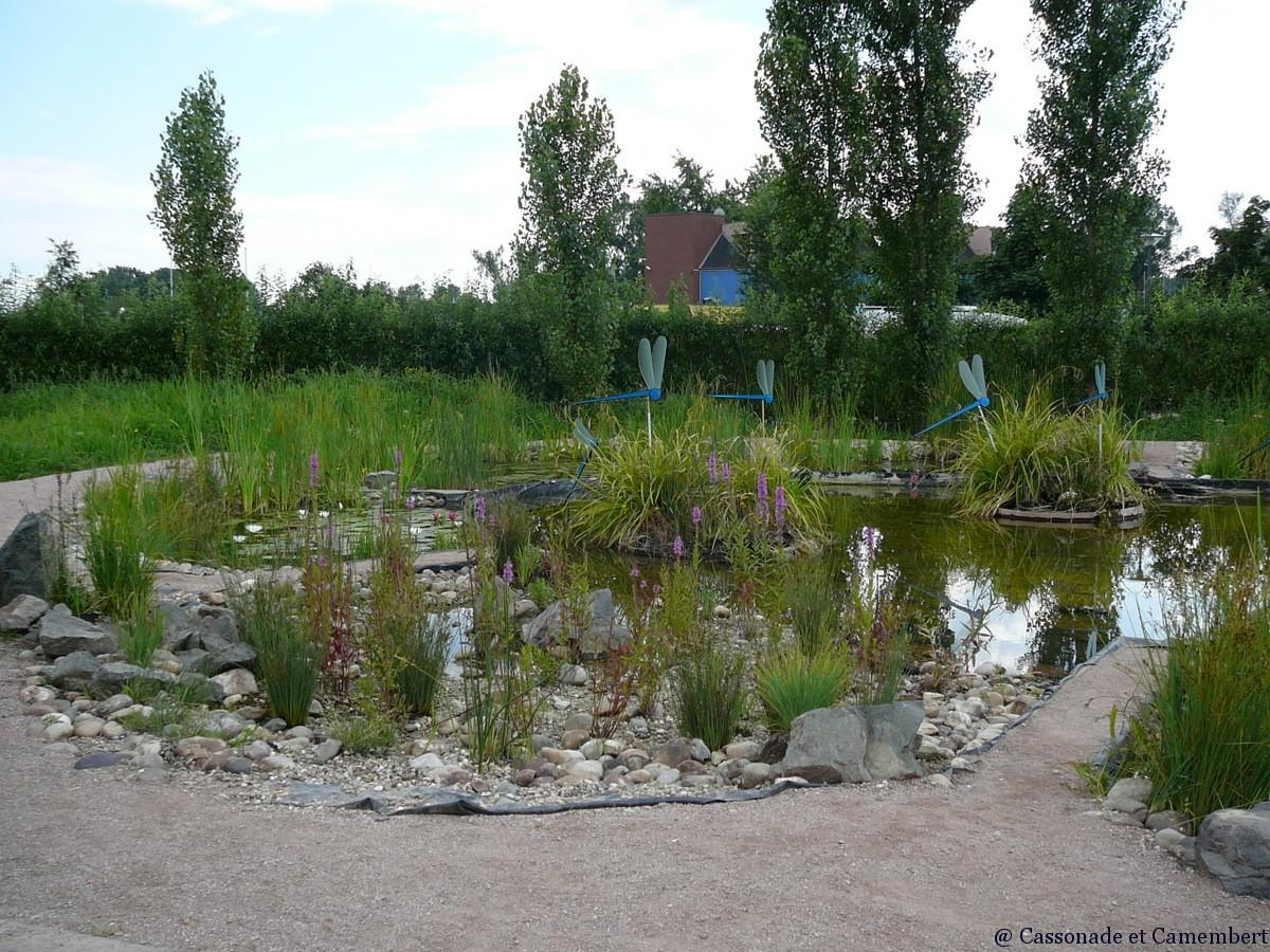 Le jardin des deux rives strasbourg cassonade et camembert for Jardin des 2 rives strasbourg