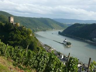Rheinsteig vue sur Kaub