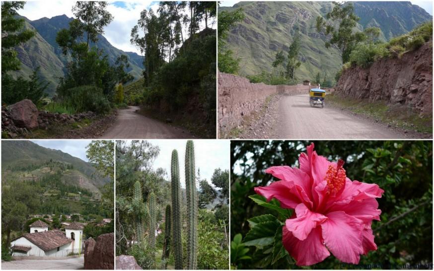 Village Taray