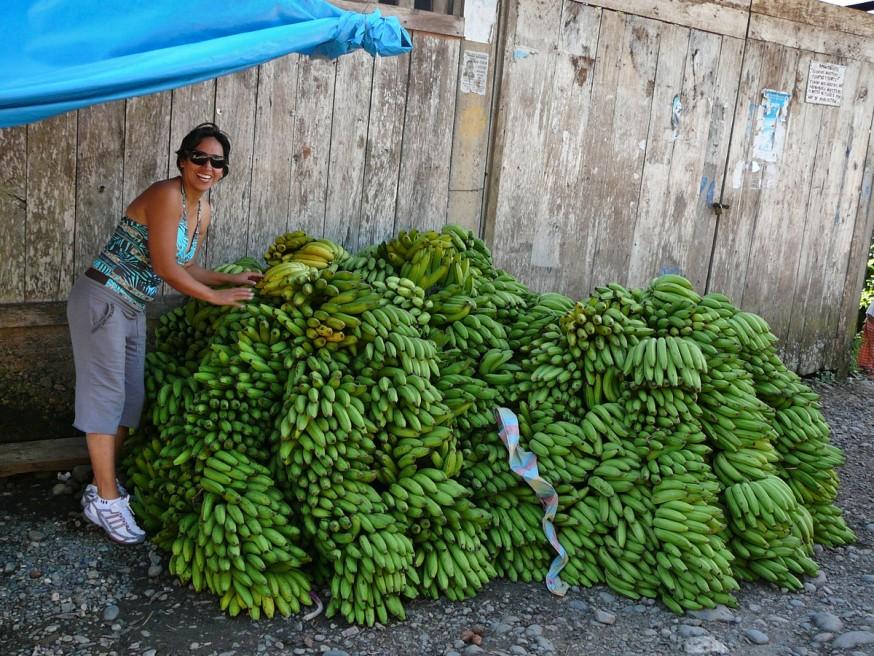 Bananes Atalaya