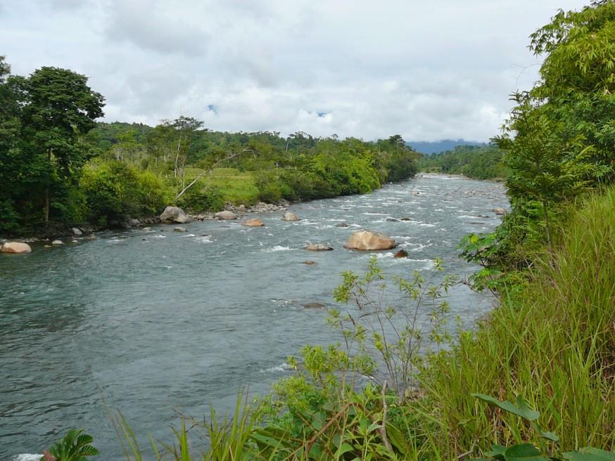 Comunidad nativa de Huacaria - Riviere pres de Pilcopata