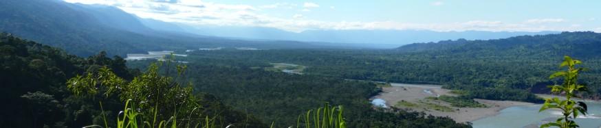 Vue sur forêt tropicale depuis Mirador Atalaya