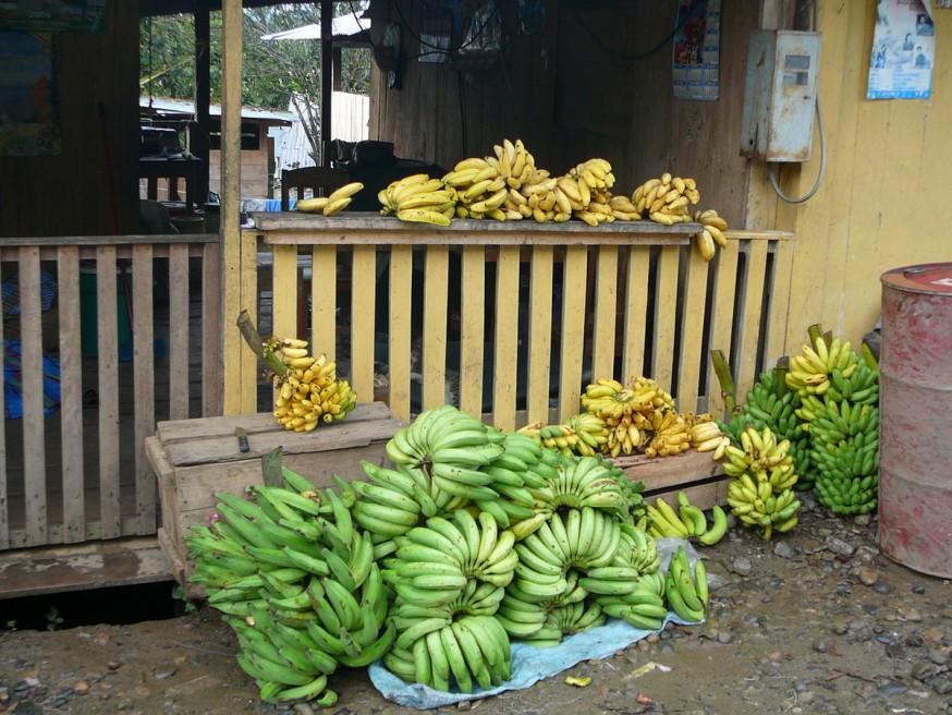 Bananes port Atalaya