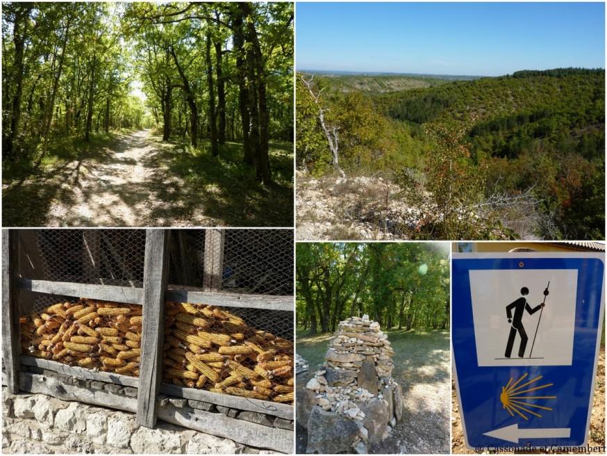 Entre Cahors et Lascabanes - compostelle quercy blanc