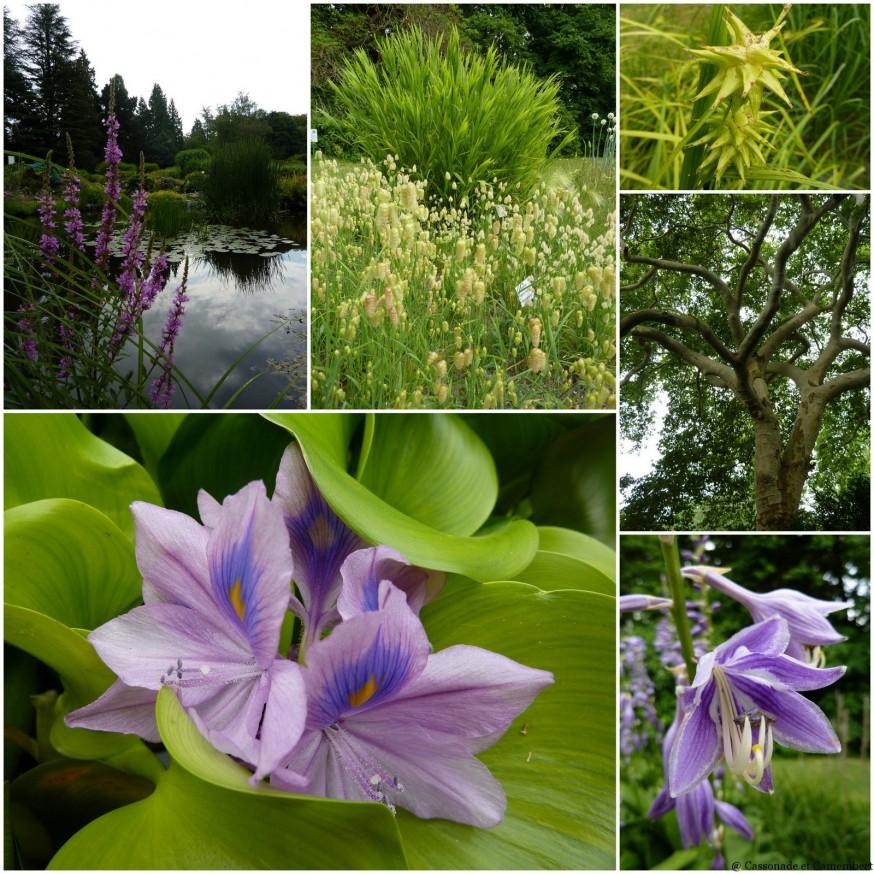 Jardin botanique Darmstadt