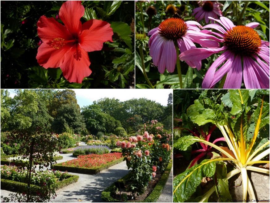 Jardin botanique parc de la tete d or Lyon