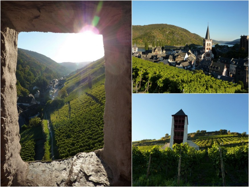 Vignoble Bacharach