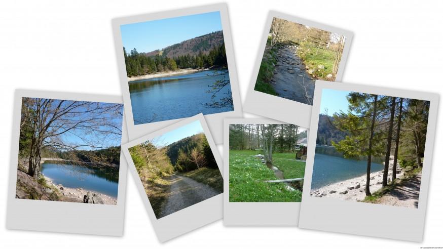 Lac des Corbeaux - La Bresse