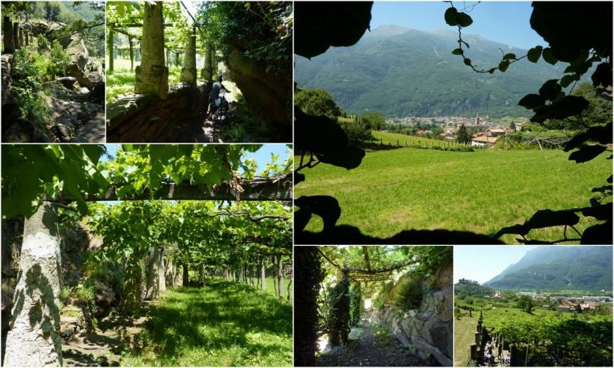 Chemins vignobles val d aoste