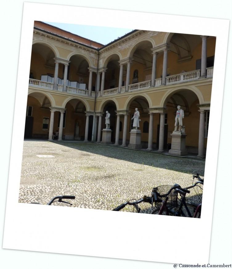 Universite de Pavia