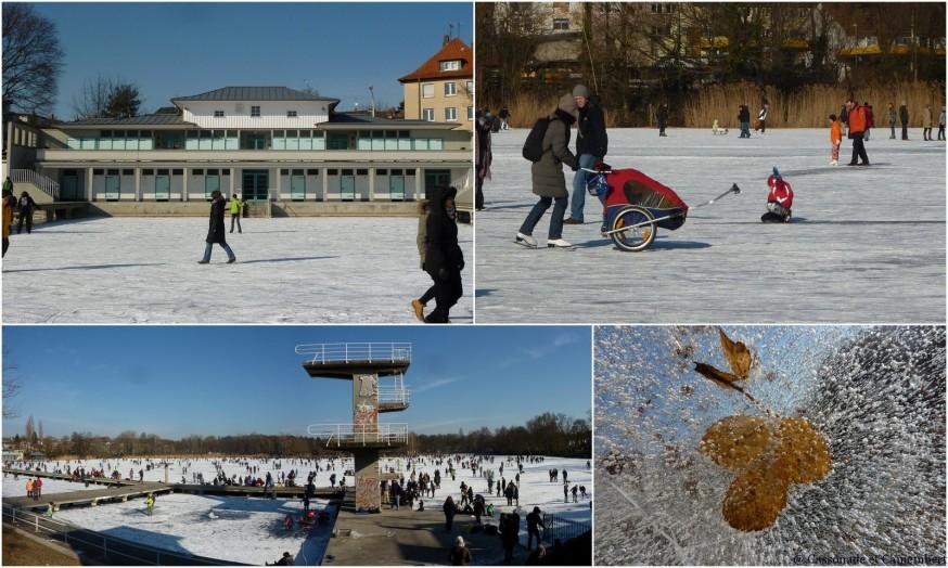 Woog Darmstadt gelé