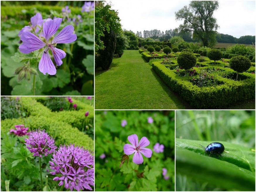 Jardin bleu - ferme du Mont des Recollets