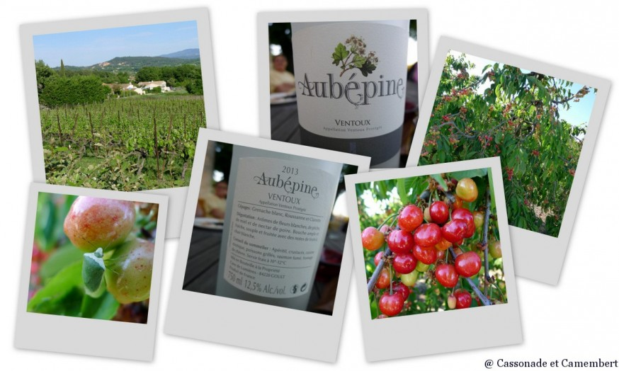 Production agricole Saint Pantaleon - gite luberon
