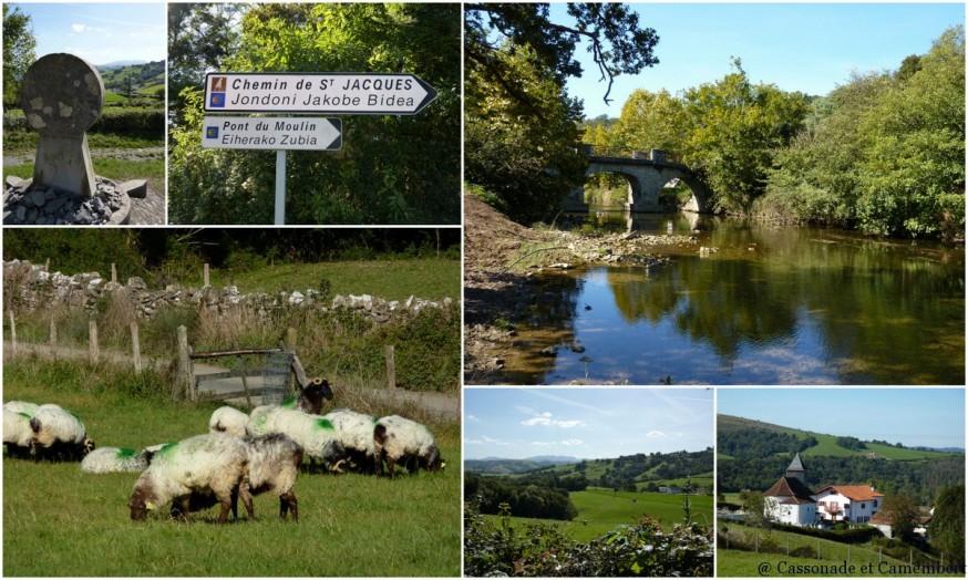 moutons  - compostelle pays basque