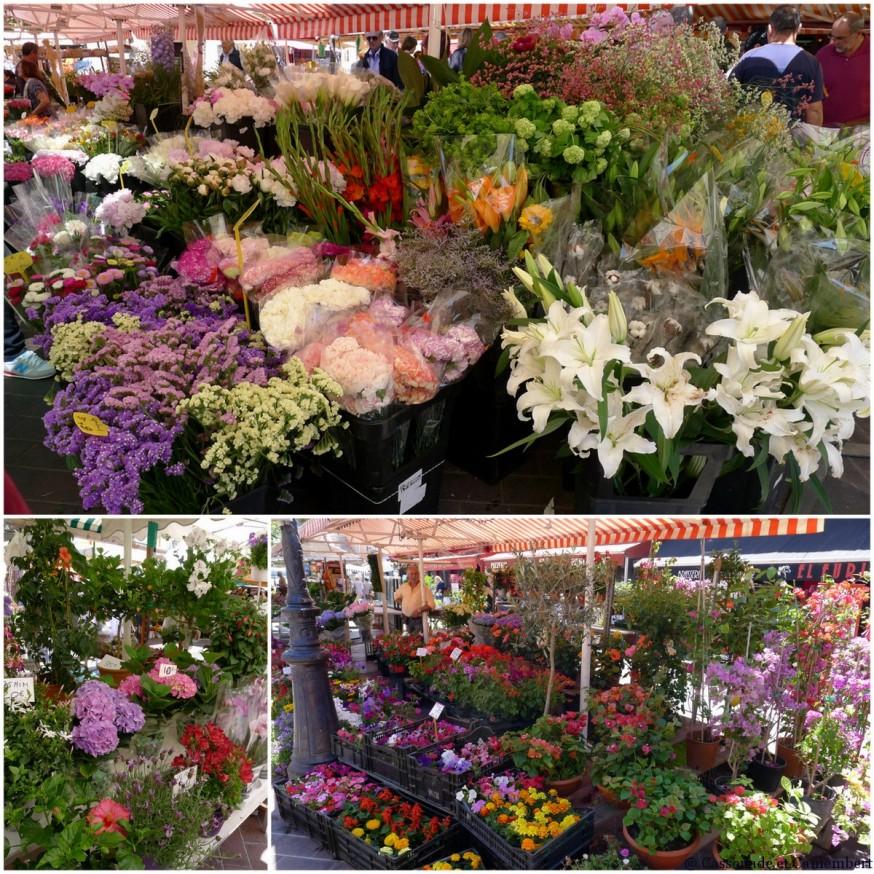 Le marché aux fleurs dans le Vieux-Nice