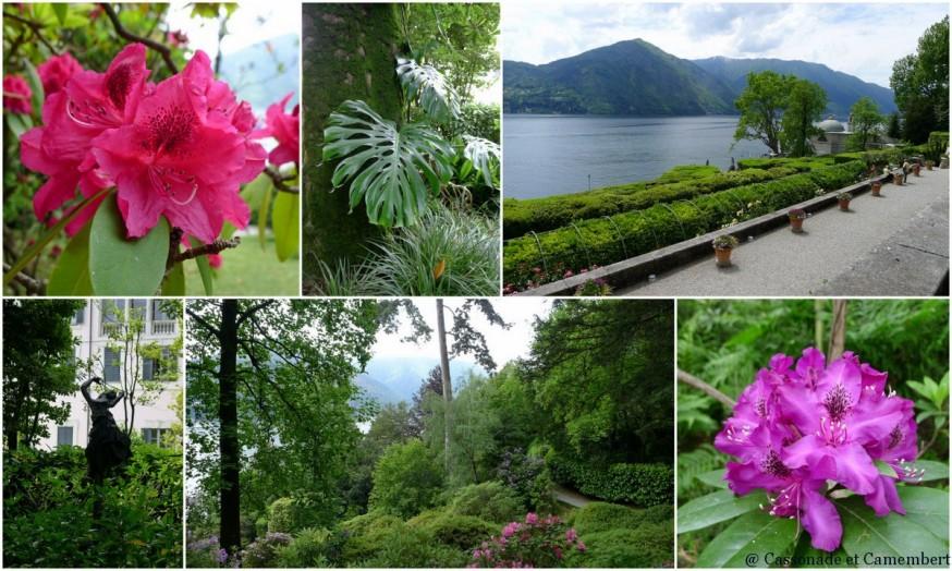 Les rhododendrons de la villa Carlotta sur le lac de Côme
