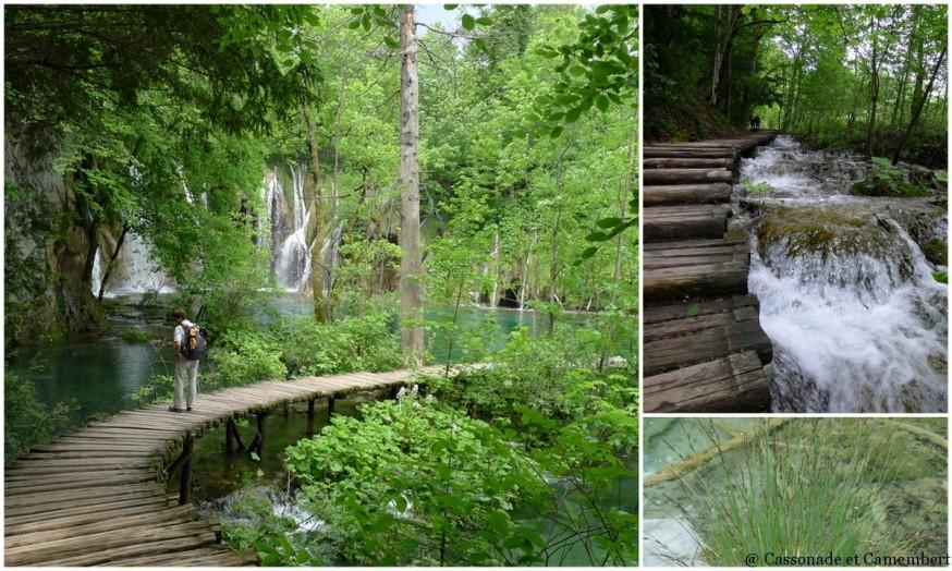 Pontons Parc des lacs de Plitvice