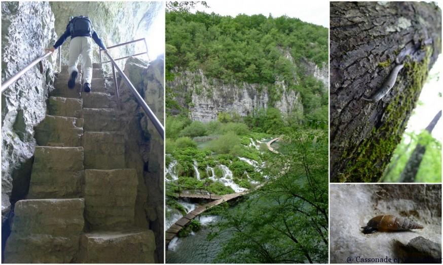Montée dans grotte Supljara Parc Plitvice