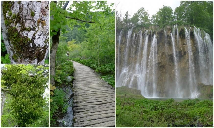 Cascades Parc des lacs de Plitvice