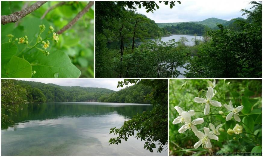 Grands lacs Parc des lacs de Plitvice