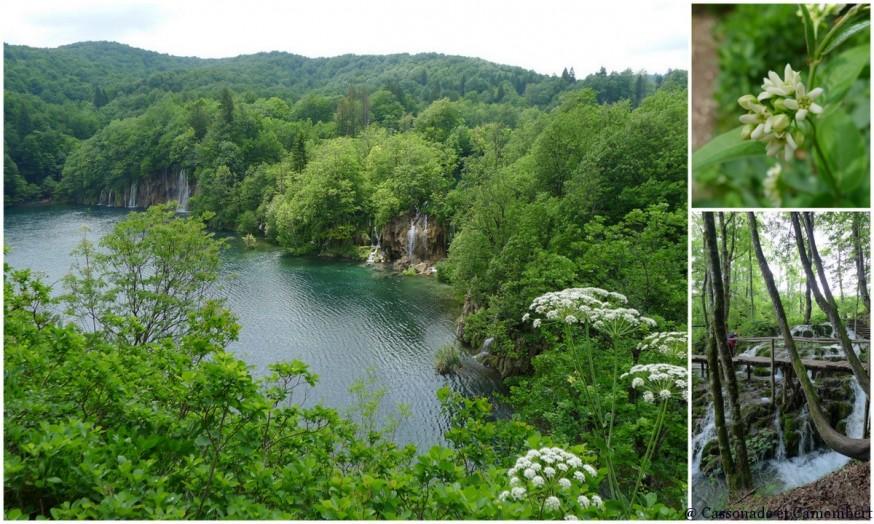 Grand lac Parc des lacs de Plitvice