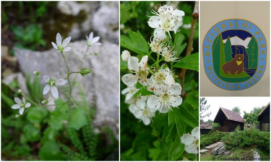 Flore Parc Plitvice