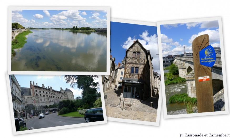 Loire à vélo arrivée à Blois
