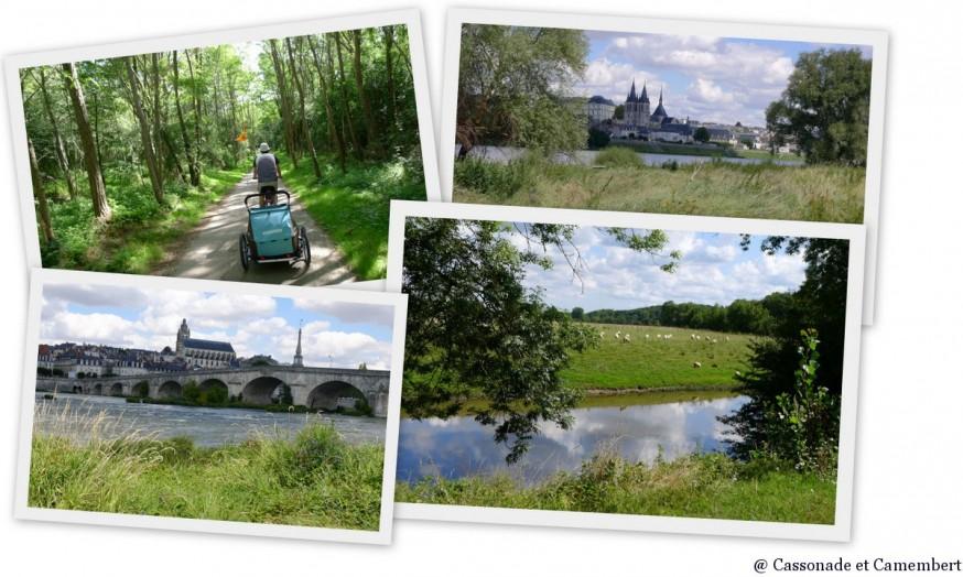 Loire à vélo entre Chaumont-sur-Loire et Blois