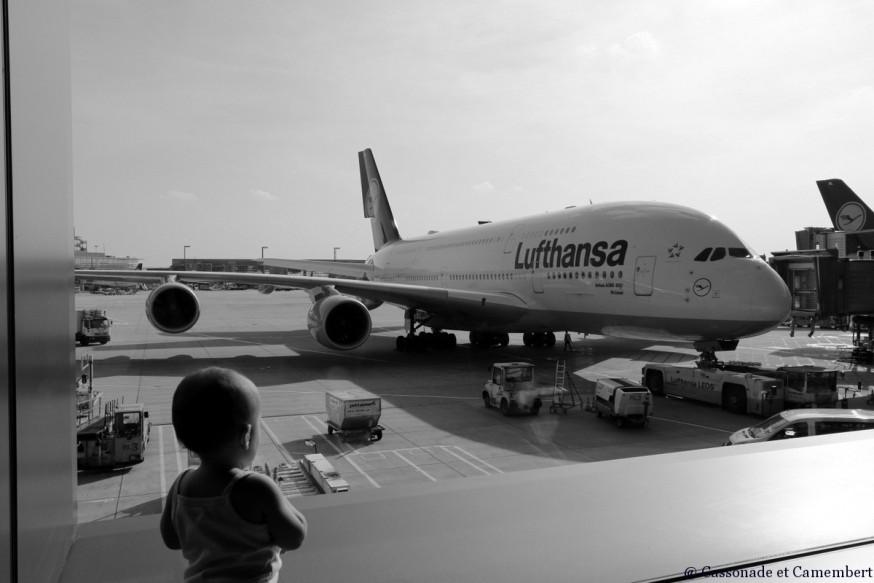 Camomille avion