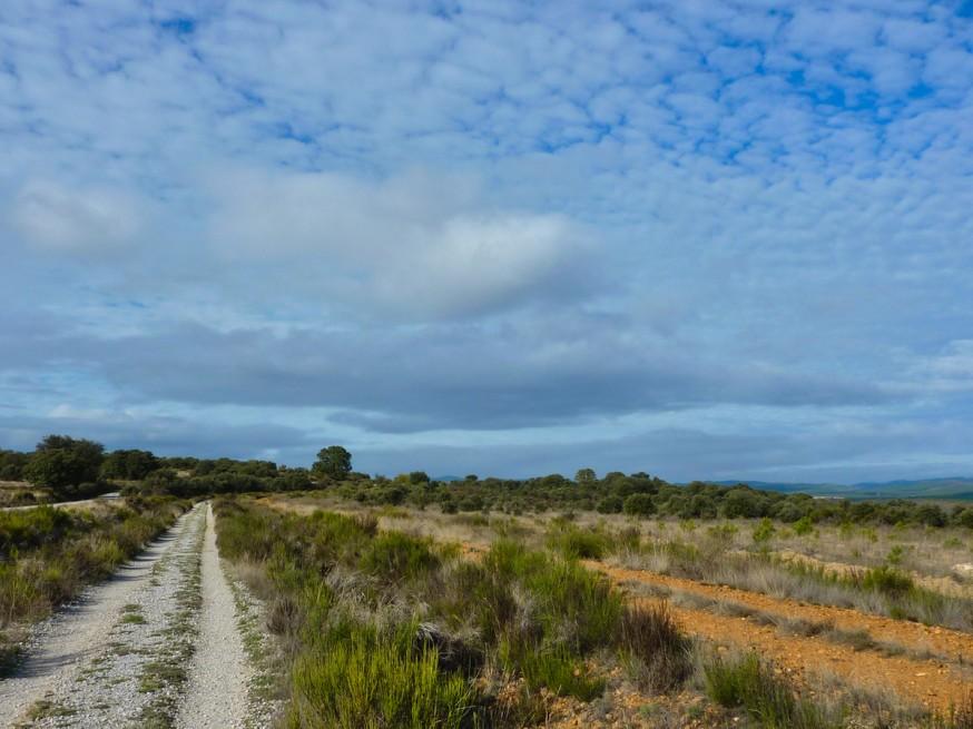 Compostelle - Bierzo - Entre Astorga et Rabanal
