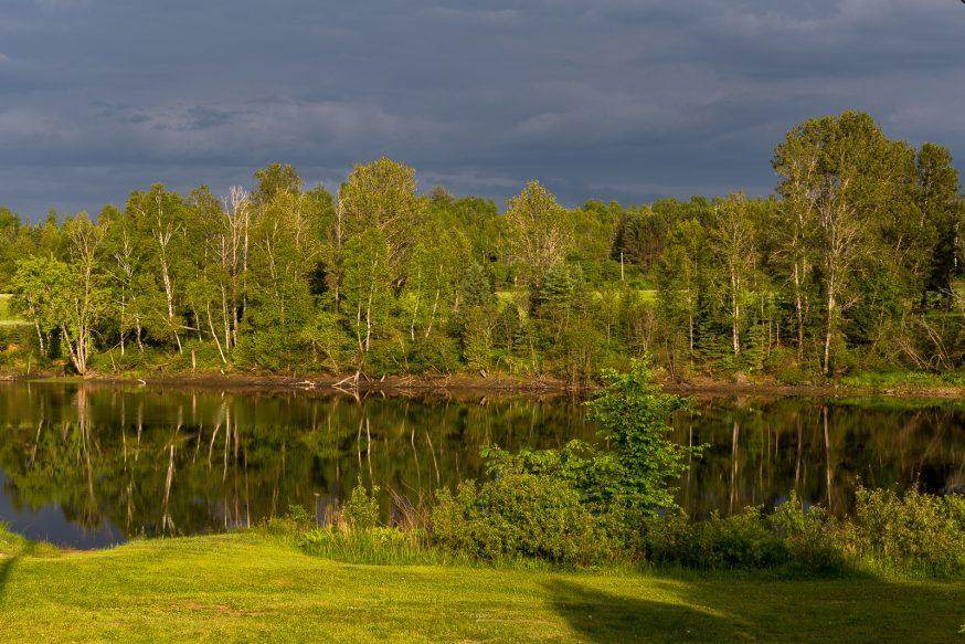 Riviere Gatineau - Sur les traces du castor