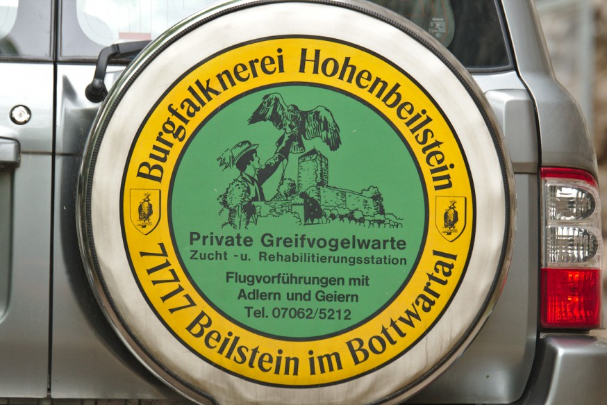 Fauconnerie du chateau de Hohenbeilstein