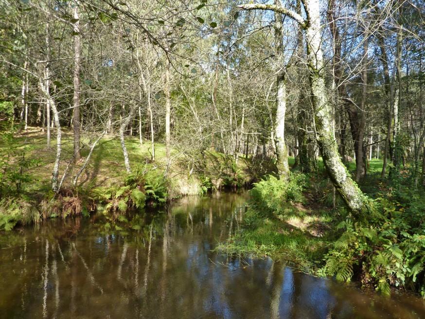L'eau en Galice - Compostelle