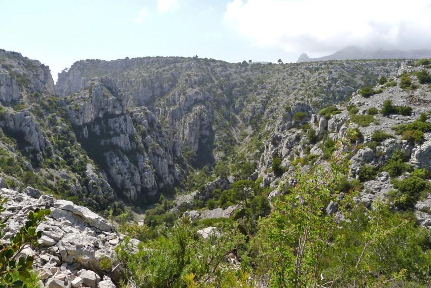 Vue sur le vallon d'En-Vau - Calanque d'En-Vau