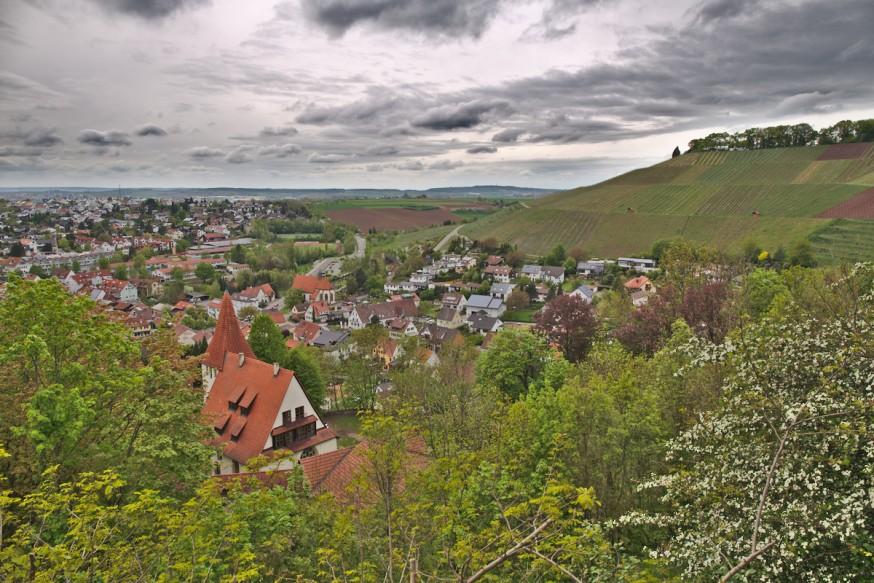 Vue sur les vignes depuis le chateau de Hohenbeilstein 2