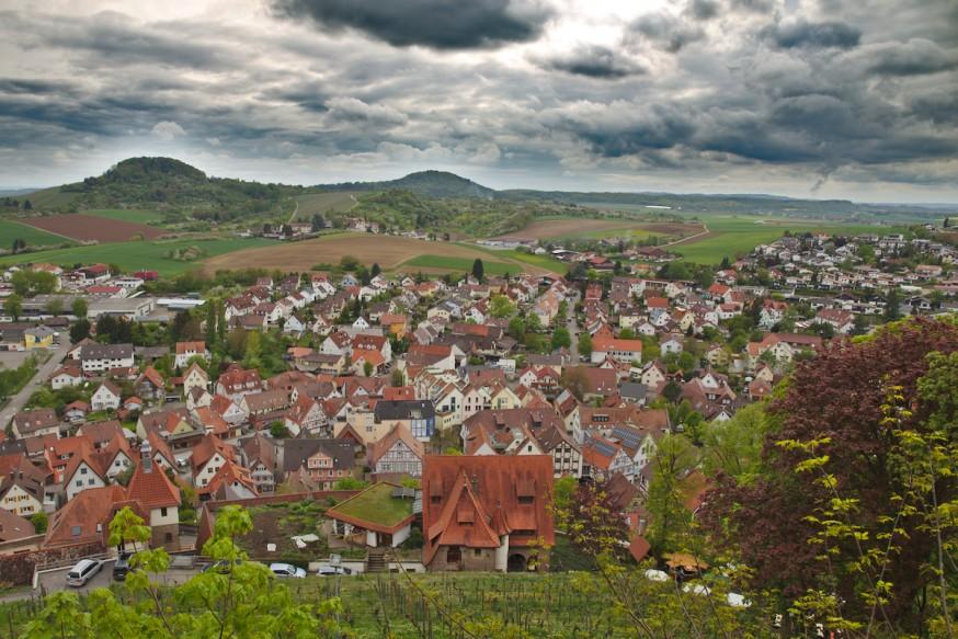 Vue sur les vignes depuis le chateau de Hohenbeilstein 3