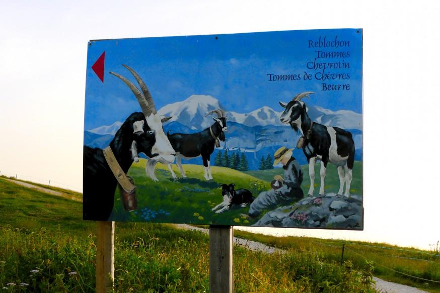 Ferme à reblochon - Semnoz - Rando lac d Annecy