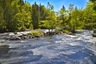 Riviere Diable - Parc du Mont-Tremblant - Québec