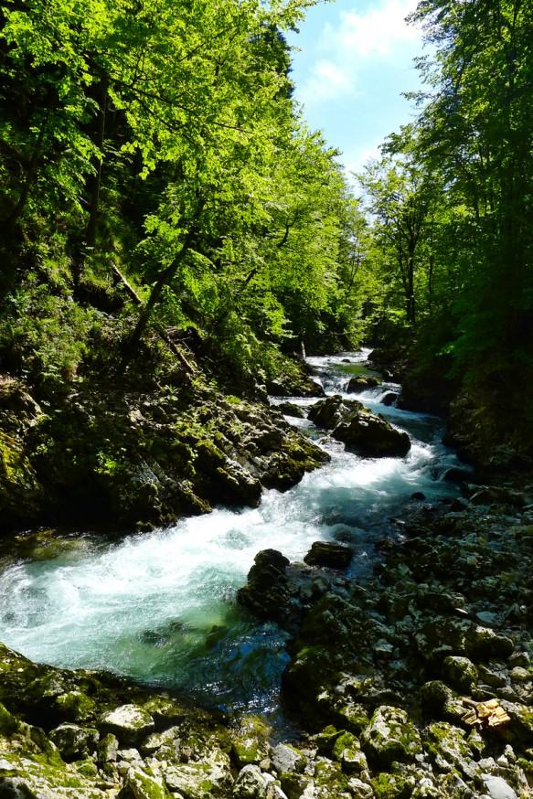 Gorges de Vingtar - Slovenie - 1