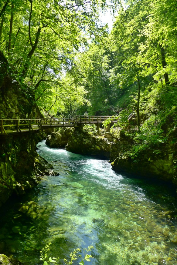 Gorges de Vingtar - Slovenie - 3