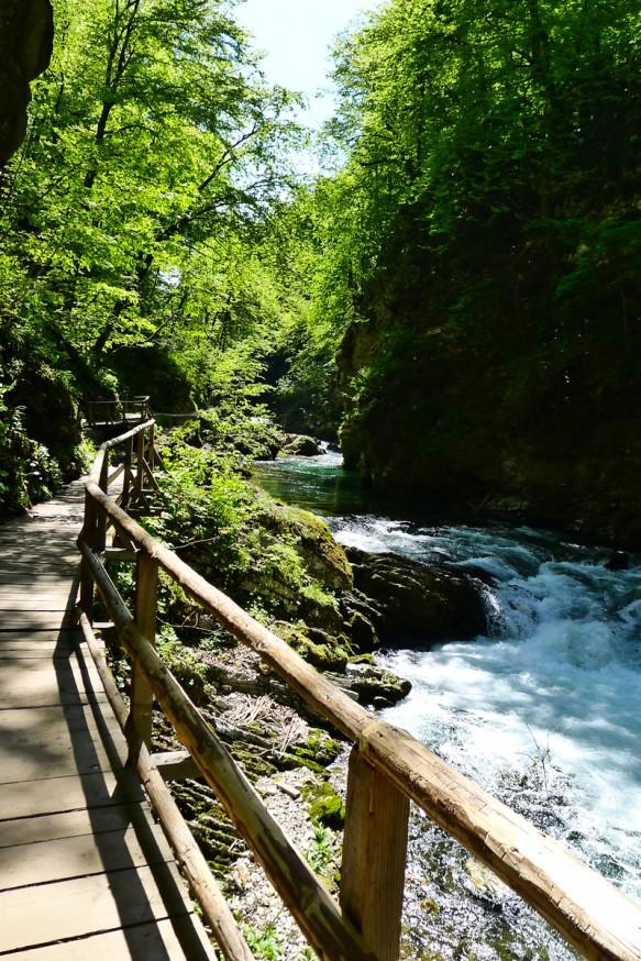 Gorges de Vingtar - Slovenie - 5