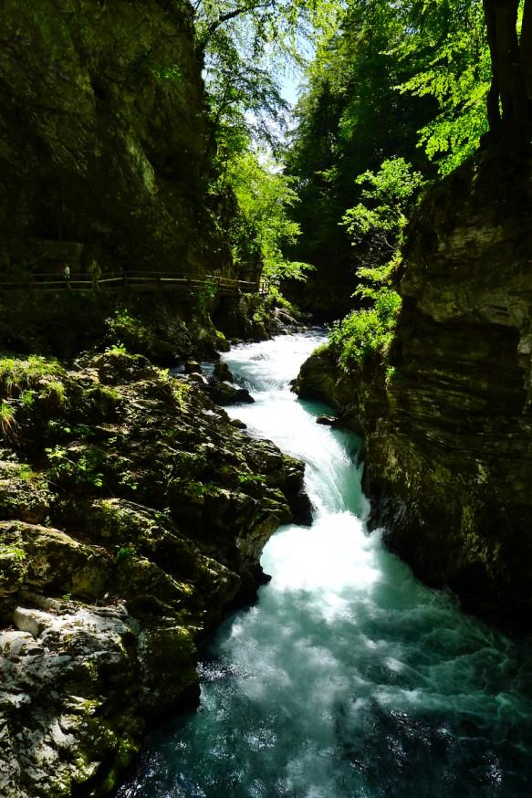 Gorges de Vingtar - Slovenie - 6