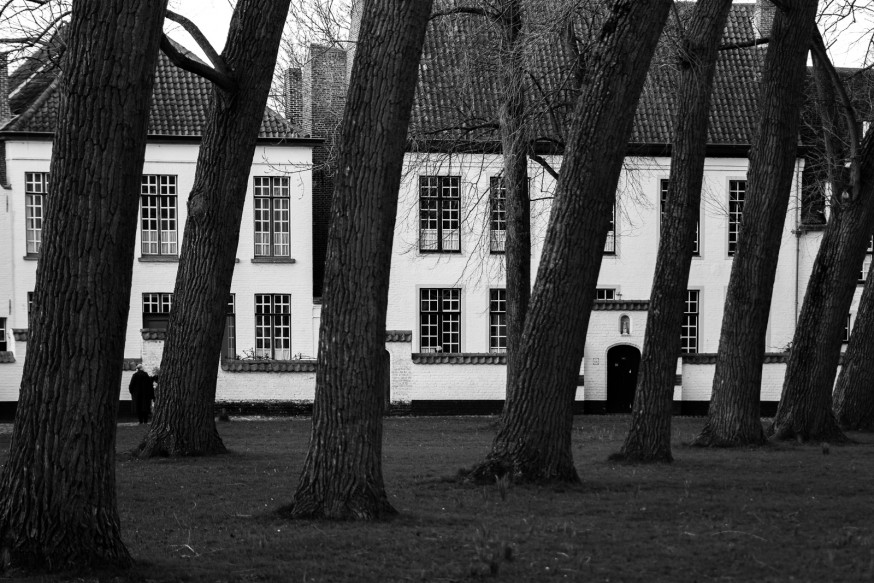 Bruges - Beguinages - Cour principale