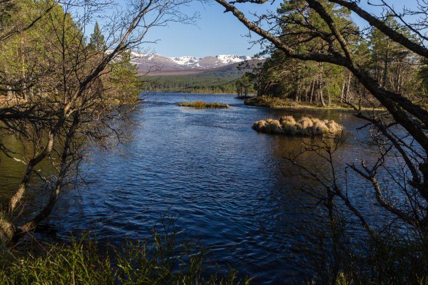 Cairngorms-Loch Morlich-5